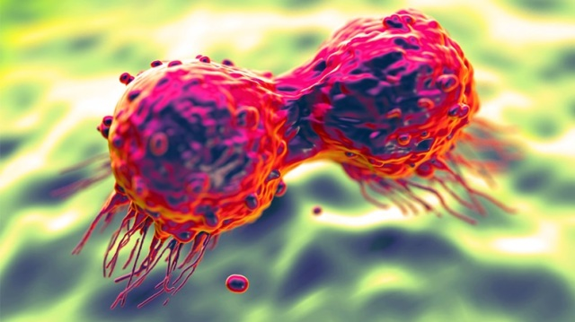 DividingBreastCancerCell_royaltystockphoto_149771528_1200x675